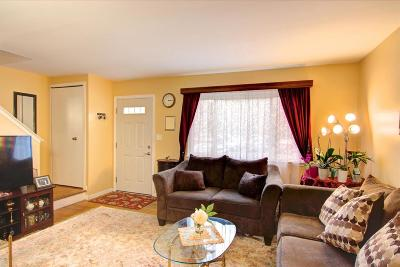 Ann Arbor Condo/Townhouse For Sale: 3109 Williamsburg