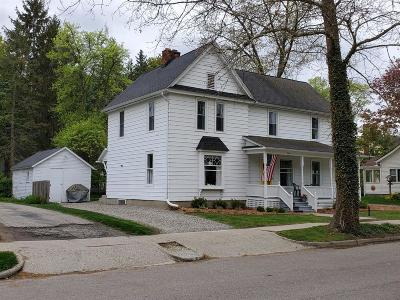 Chelsea Single Family Home For Sale: 216 Jefferson St