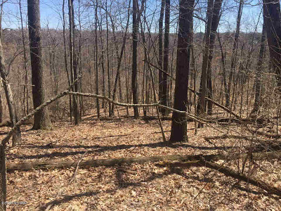 Residential Lots & Land For Sale: Meachem Rd