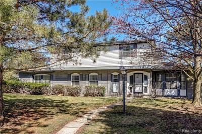 Southfield Single Family Home For Sale: 23848 Brazil Ave