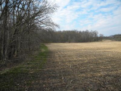 Saline MI Residential Lots & Land For Sale: $169,000