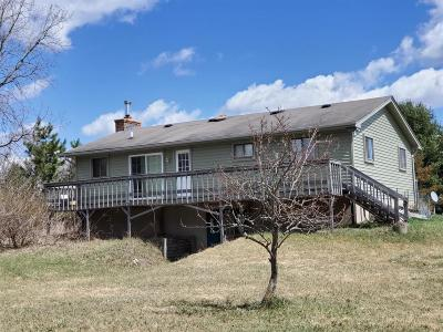 Chelsea Single Family Home For Sale: 4380 Musbach Rd