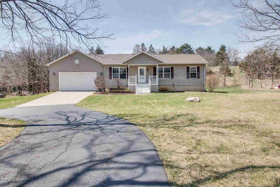 Albion Single Family Home For Sale: 13781 23 Mile Rd