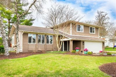 Ann Arbor Single Family Home For Sale: 4221 Sunset Crt