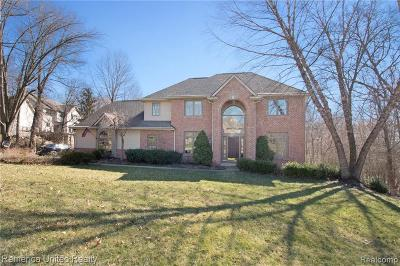 Brighton Single Family Home For Sale: 7710 Partridge Hill Dr