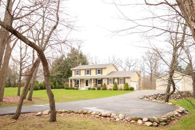 Brighton Single Family Home For Sale: 10257 Winsted Ln