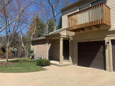 Ann Arbor Condo/Townhouse For Sale: 3049 Forest Creek Ct