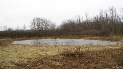 Residential Lots & Land For Sale: Curry Rd