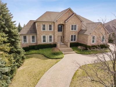 Northville Single Family Home For Sale: 45415 Tournament Dr