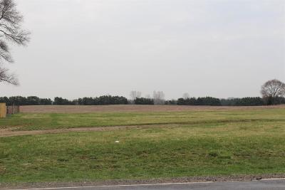 Grass Lake Residential Lots & Land For Sale: Wolf Lake B1 Rd