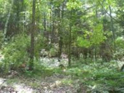 Residential Lots & Land For Sale: 17 Mile Rd.