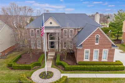 Novi Single Family Home For Sale: 22774 Summer Ln