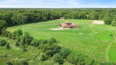 Ann Arbor Single Family Home For Sale: 2520 W Delhi Rd