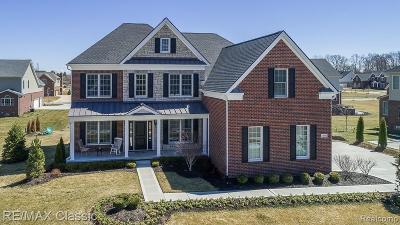Novi Single Family Home For Sale: 24483 Acorn Trail