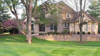 Ann Arbor Single Family Home For Sale: 5814 Lohr Lake Dr