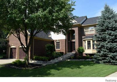 Wixom Single Family Home For Sale: 1123 Parkview Crt