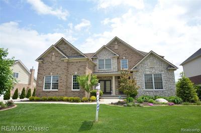 Novi Single Family Home For Sale: 50348 Langley Dr
