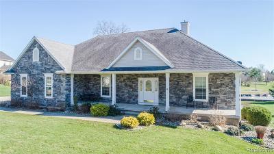Lansing Single Family Home For Sale: 4193 W Clark Rd