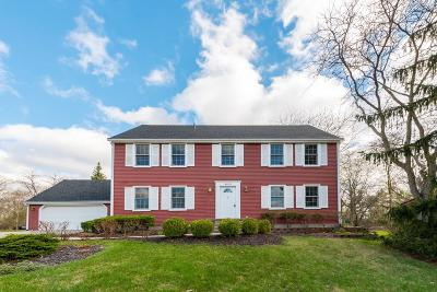 Ann Arbor Single Family Home For Sale: 3875 Waldenwood Dr