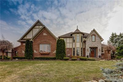 South Lyon Single Family Home For Sale: 8953 Stoney Creek Dr