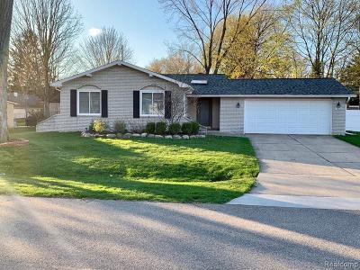 Novi Single Family Home For Sale: 41800 Sycamore Dr