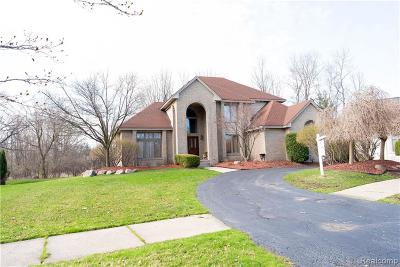 West Bloomfield Single Family Home For Sale: 6642 Torybrooke Cir