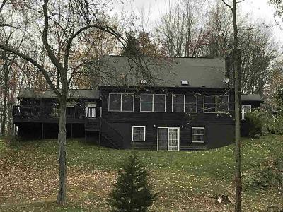 Hudson MI Single Family Home For Sale: $480,000