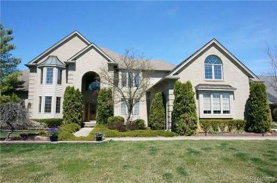 South Lyon Single Family Home For Sale: 22892 Saint Andrews Dr