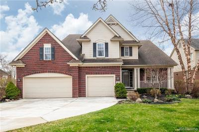 Northville Single Family Home For Sale: 50292 Livingston Dr