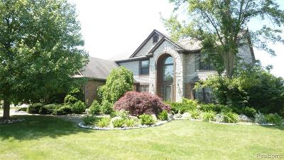 Canton Single Family Home For Sale: 46957 Yarmouth Dr