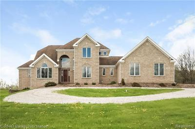 South Lyon Single Family Home For Sale: 3854 5 Mile Rd