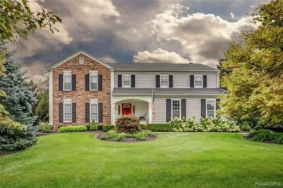 Northville Single Family Home For Sale: 38005 W Meadowhill