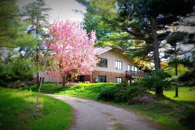 Dexter Single Family Home For Sale: 9501 Dexter Chelsea Rd
