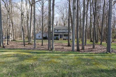 Chelsea Single Family Home Contingent - Financing: 5745 S Hayrake Holw