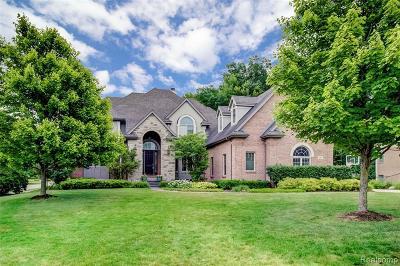 South Lyon Single Family Home For Sale: 8981 Hidden Crt E