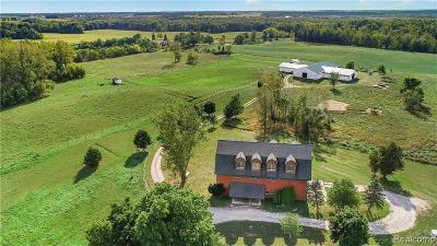 Hudson MI Single Family Home For Sale: $359,900