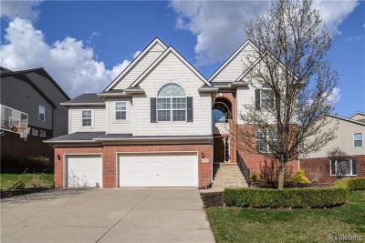 Northville Single Family Home For Sale: 49767 Parkside Dr