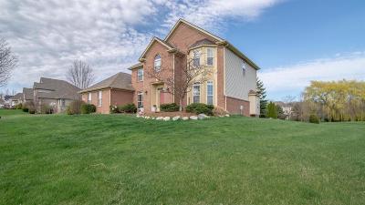Milan Single Family Home For Sale: 10291 Ridgeline Dr