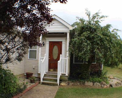 Cement City Single Family Home For Sale: 14839 Killorglin Ln