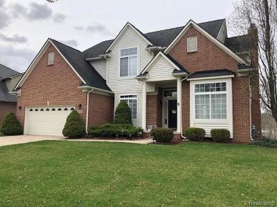 Chelsea Single Family Home For Sale: 390 Fairways Ln