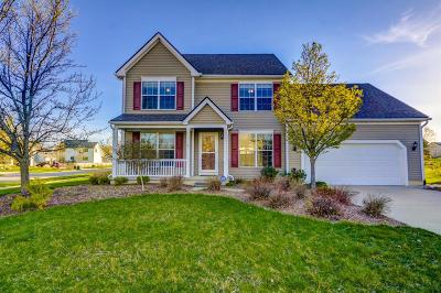 Dexter Single Family Home For Sale: 7153 Palmer St