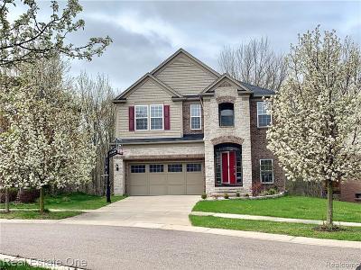 Novi Single Family Home For Sale: 45223 Bartlett Dr
