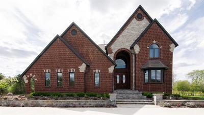 Ann Arbor Single Family Home For Sale: 5333 Kelsey Cir