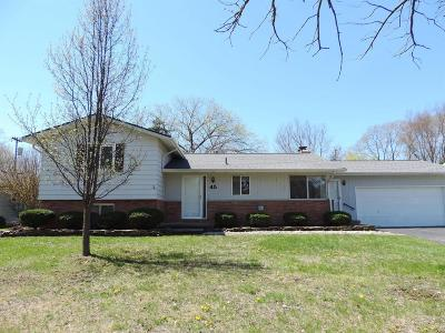 Chelsea Single Family Home For Sale: 45 Butternut Ct