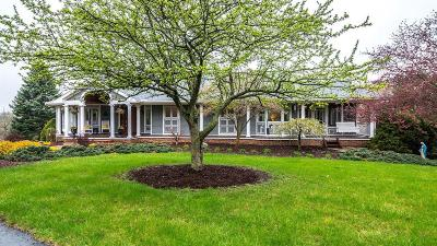 Dexter Single Family Home Contingent - Financing: 7863 Mast Rd