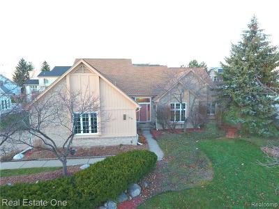 West Bloomfield Single Family Home For Sale: 5538 Silver Pond
