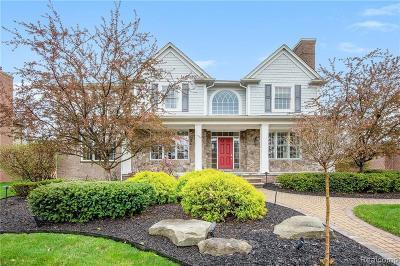 Canton Single Family Home For Sale: 48859 Ivybridge Way