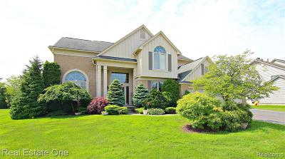 West Bloomfield Single Family Home For Sale: 5069 Village Commons Dr