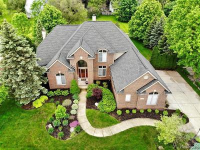 Novi Single Family Home For Sale: 22339 Barclay Dr
