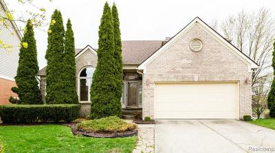 Plymouth Single Family Home For Sale: 50467 Waterstone Crt